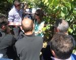 Presentazione varietale e consigli di potatura del team Escande