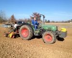 plantation-de-greffes-sur-table-pour-les-knip-de-20132014-2