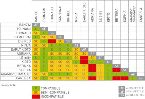 Tableau d'intercompatibilité des Abricots ESCANDE