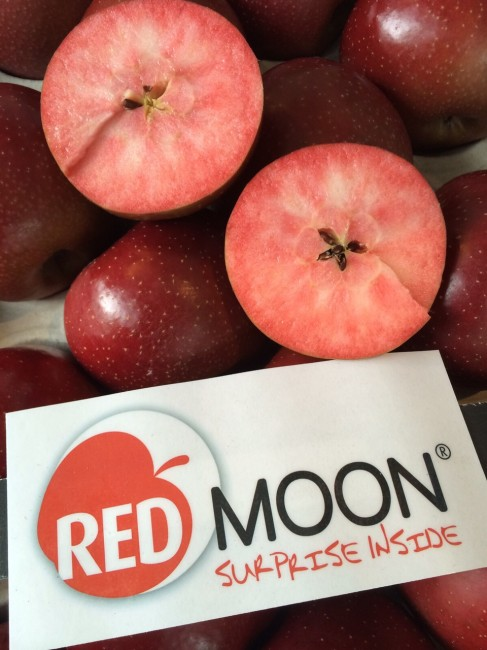 pomme rouge-red moon-10
